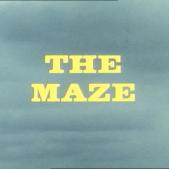 The Maze Title Shot