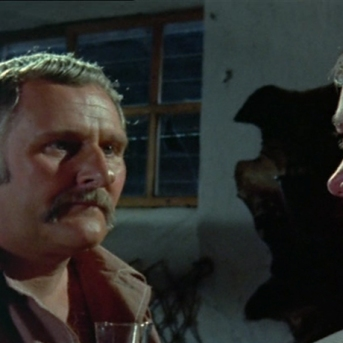 Peter Vaughan as Quin