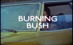 The Protectors_Burning Bush Title Shot