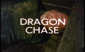 The Protectors_Dragon Chase Title Shot
