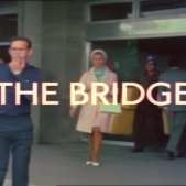 The Protectors_The Bridge Title Shot