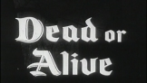 RobinHood_Dead or Alive06