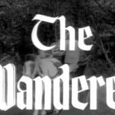 RobinHood_The Wanderer Title Shot