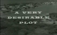 The Sentimental Agent_A Very Desirable Plot_58